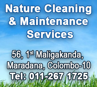 Janitorial Services - Ad 07 - Nature Cleaning Maintenance Services
