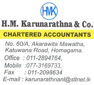 PROFESSIONAL SERVICES-H M Karunarathna & Co