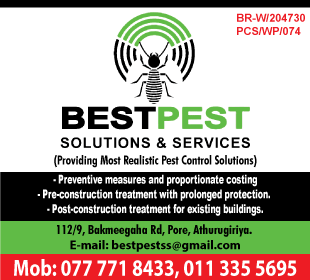 Best Pest Solutions and Services