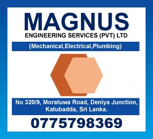 Magnus Ltd
