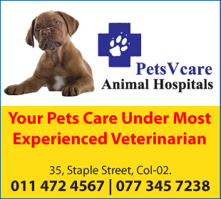 Veterinarians-Pets V Care Animal Hospitals