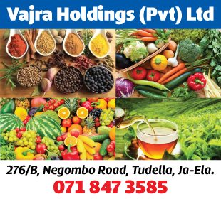 Vajra Holdings (Pvt) Ltd