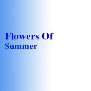 Flowers Of Summer