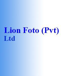 Lion Foto