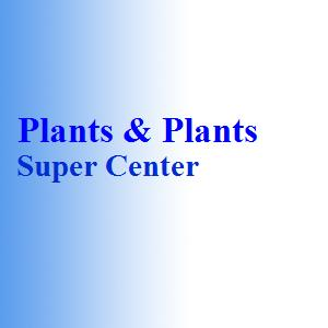 Plants & Plants Super Center