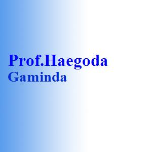 Prof.Haegoda Gaminda