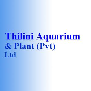 Thilini Aquarium & Plant (Pvt) Ltd