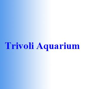 Trivoli Aquarium