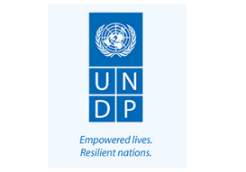 United Nations Development Programme - UNDP