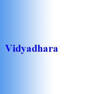 Vidyadhara
