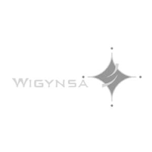Wigynsa Global (Pvt) Ltd